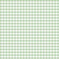 Coton vichy menthe 10 mm