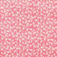 Coton imelda rose