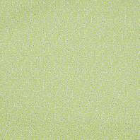 Coton imelda anis