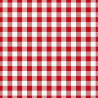 Coton vichy rouge 20 mm